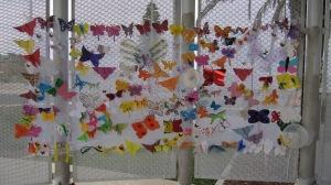butterflies 10