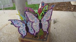 butterflies 7