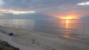 sunset 2013 nye 6