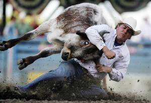 take-the-bull-by-the-horns