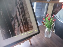 A hint of one of the pictures, with a vase of chillies