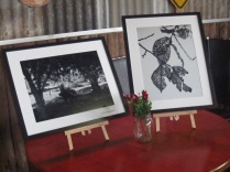 A couple of the photos