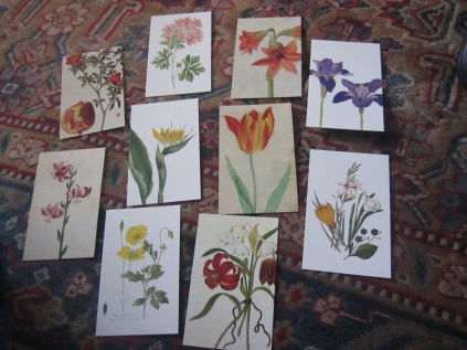 A selection of a set of beautiful postcards given me as a birthday present. They are almost too hard to part with!