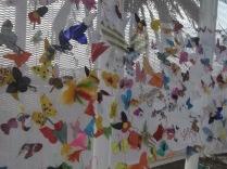 Butterflies on the net