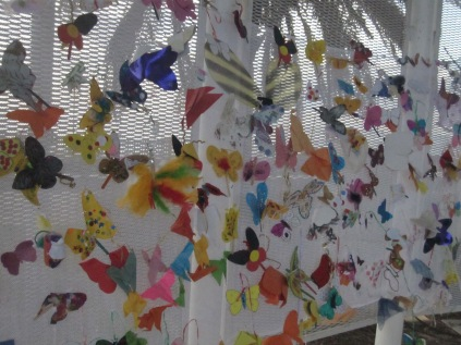 Butterflies on the net