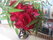 Red geranium and green lemon verbena leaves