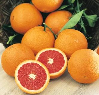 Cara-Cara-Orange