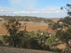 The farm from the top of the hill
