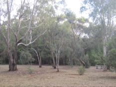Park in the Recreation area in Auburn