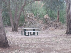 Picnic table at the Rec park donated after mum's death in her name