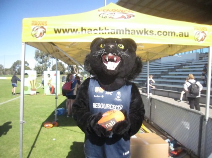 Panther at the South Adelaide ground - their mascot