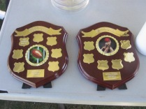 The two shields - for the two divisions playing