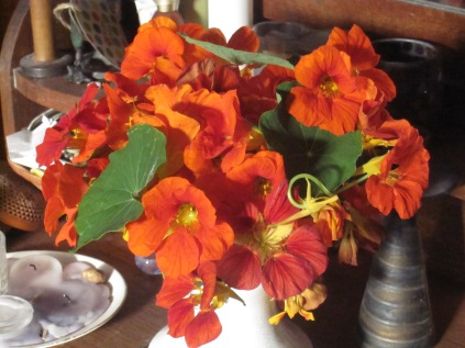bunch of nasturtiums blazing away on the dressing table