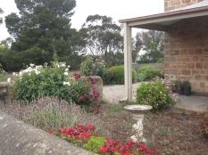 Front garden looking towards Becker's back paddock