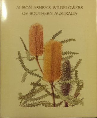 A book of Alison's botanical drawings
