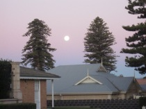 Moon as balloon between trees
