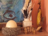 Feathers, nest (or is it a basket?), eggs and more