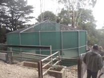 The bird enclosure