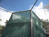 The central smaller enclosure within the larger one - the birds graduate from one to the other as they get stronger