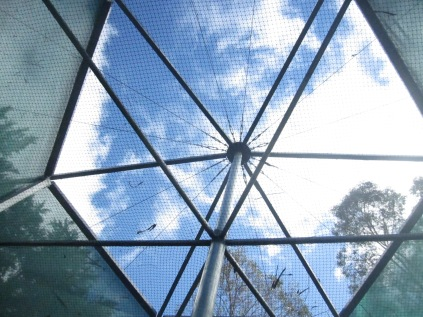The top of the enclosure