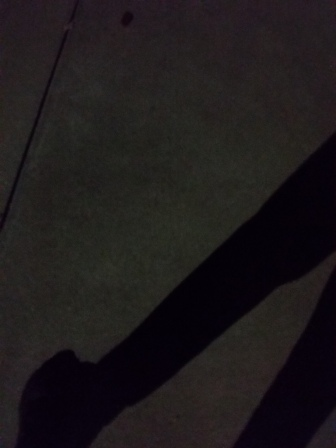 Me in the moonlight (well, actually it was under a street lamp)