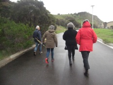 We went for a walk on Saturday afternoon, threatening rain
