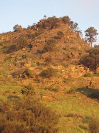 Evening sunlight, steep hill