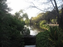 The pond in the gardens