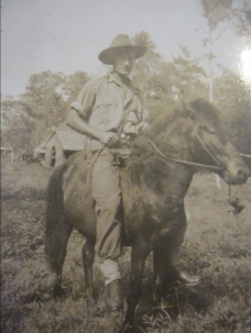 Dad on a horse in New Guinea
