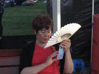 A fan with a fan