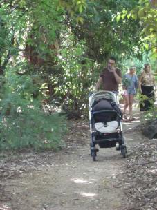 Pram on the path