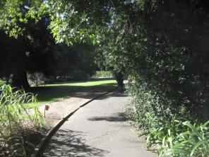 Footpath curving