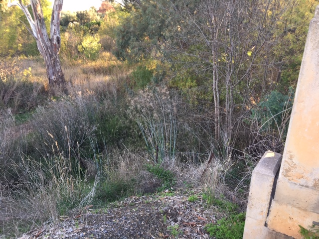 creek 6