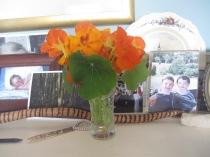 flowers inside 12