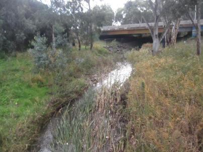 Sturt creek looking towards the overpass