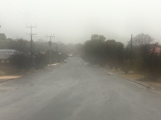 Misty light, rain, Auburn