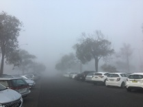 And then back in fog on arrival at the work car park